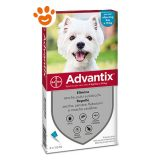 Bayer-Advantix-Spot-On-per-Cani-oltre-4-kg-fino-10-kg-B-A