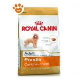 Royal Canin Dog Adult Barboncino (Poodle)