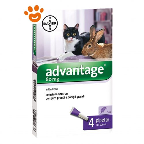 Bayer Advantage 80 mg Gatto oltre 4 kg