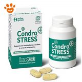 Innovet Condrostress Plus