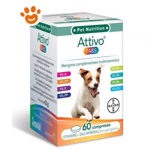 Bayer Attivo Tabs compresse -