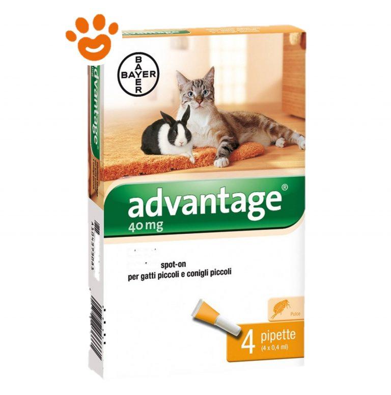 Bayer Advantage 40 mg Gatto inferiore 4 kg