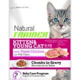 natural trainer kitten young cat con pollo fresco