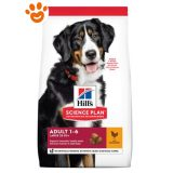 hills-science-plan-adult-large-breed-pollo-cane-mantenimento
