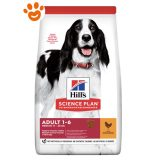 hills-science-plan-adult-medium-pollo-cane-mantenimento