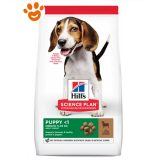 hills-science-plan-puppy-medium-agnello-riso-cane-mantenimento