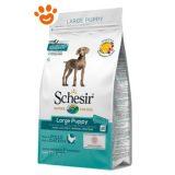 Schesir-Dog-Large-Puppy-Pollo-Mantenimento-Cibo-Secco-3-kg-12-kg